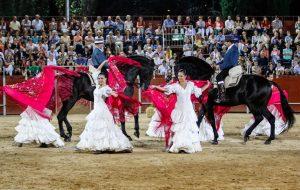 Arte y pasion sueños a caballo - Danza ecuestre