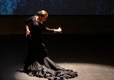 Encuentro. De la cultura andalusí al flamenco
